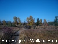 Paul Rogers Walking Path - WEB.jpg